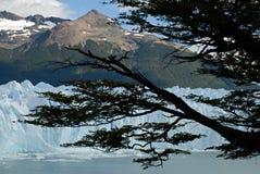 El glaciar en Patagonia, la Argentina de Perito Moreno. Fotos de archivo