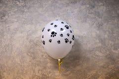 El globo de los niños hermosos inflado con helio contra la pared texturizada imagen de archivo