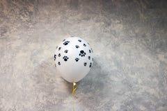 El globo de los niños hermosos inflado con helio contra la pared texturizada foto de archivo