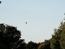 El globo del aire caliente photgrphed en el Bealton, demostraci?n de aire del circo del vuelo del VA foto de archivo