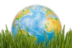 El globo en una hierba verde. Fotografía de archivo