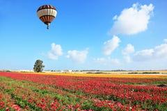 El globo rayado brillante vuela sobre un campo Fotos de archivo libres de regalías