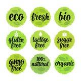 El gluten, lactosa, azúcar, gmo libera las letras Alimento biológico de la muestra 100 Fotos de archivo libres de regalías