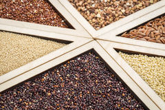 El gluten libera granos Fotos de archivo