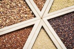 El gluten libera granos Foto de archivo libre de regalías