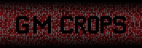 El GM cosecha el texto en el ejemplo del fondo del código de la DNA Fotos de archivo