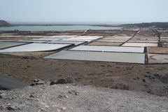 El golfo salines, lanzarote, canaria islands Royalty Free Stock Image
