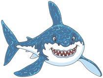 El gran atacar del tiburón blanco Imagen de archivo libre de regalías