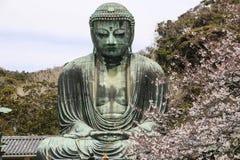 El gran Buda Daibutsu sobre la base del templo de Kotokuin en Kamakura, Jap?n imagen de archivo