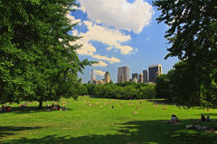 El gran césped en Central Park Imagenes de archivo