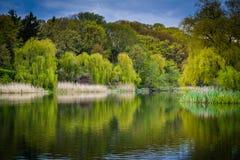 El granadero Pond, en el alto parque, en Toronto, Ontario fotografía de archivo