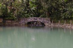 EL grande Yunque Porto Rico dello stagno di Bano Fotografia Stock