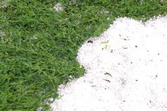 El granizo e hierba verde Fotos de archivo libres de regalías