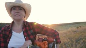 El granjero de la mujer está llevando una caja por completo de verduras Alimento biológico Forma de vida sana almacen de video