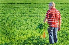 El granjero de la zanahoria Foto de archivo libre de regalías