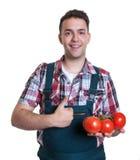 El granjero de risa le gustan los tomates frescos Fotos de archivo libres de regalías