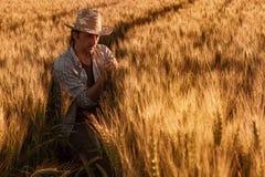 El granjero del agrónomo está examinando los oídos de maduración del trigo en campo foto de archivo libre de regalías