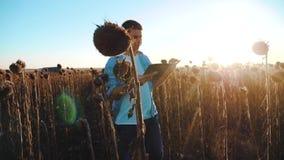 El granjero del hombre con la tableta en el campo de los trabajos del girasol va forma de vida de la tierra de los paseos del sue metrajes