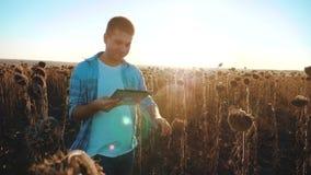 El granjero del hombre con la tableta en el campo de los trabajos del girasol va tierra de los paseos del suelo Vídeo de la cámar almacen de video