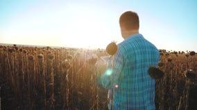 El granjero del hombre con la tableta en forma de vida que el girasol trabaja el campo va tierra de los paseos del suelo Vídeo de metrajes