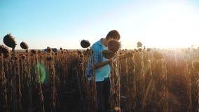 El granjero del hombre con la tableta en los trabajos del girasol que va el campo suelo camina la tierra de la forma de vida Víde metrajes