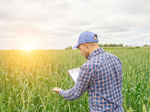 El granjero en camisa de tela escocesa controló sus notas del campo y de la escritura Imagen de archivo libre de regalías