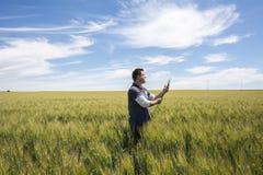 El granjero está comprobando el trigo de la calidad de la cosecha Foto de archivo