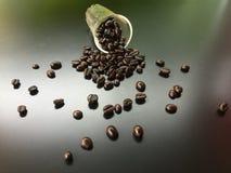 El grano de café cae abajo del vidrio Fotos de archivo libres de regalías