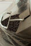 El grano de café se prepara para el paquete Foto de archivo libre de regalías