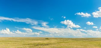El Great Plains Foto de archivo