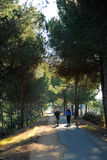 El greenway Los Molinos del Agua en Valverde del Camino, provincia de Huelva, España Imagen de archivo libre de regalías