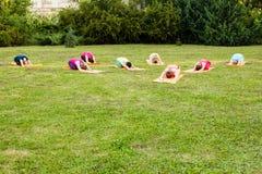 El grupo de amantes de la yoga Fotos de archivo