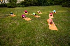 El grupo de amantes de la yoga Foto de archivo