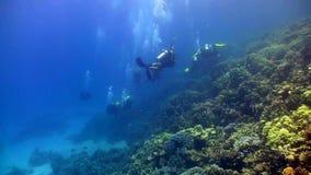 El grupo de buceadores nada sobre los arrecifes de coral almacen de video