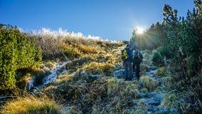 El grupo de caminantes sube la montaña congelada en la salida del sol Imágenes de archivo libres de regalías