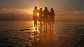 El grupo de cinco personas felices se sienta en fondo de la playa vacía de la puesta del sol Viaje o concepto de las vacaciones d metrajes