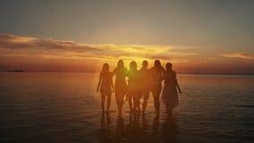 El grupo de cinco personas felices se sienta en fondo de la playa vacía de la puesta del sol Viaje o concepto de las vacaciones d almacen de video