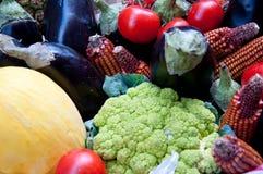 El grupo de fruta y verdura compuso de los tomates, berenjenas, Ca foto de archivo