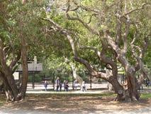 El grupo de niños y de adulto de la escuela que exploran el La Brea Tar Pits y el museo, Los Ángeles, California, circa puede 201 Fotografía de archivo