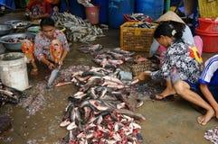 El grupo de personas pesca la preparación por la escala y corta pescados Foto de archivo libre de regalías