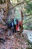El grupo de trekkers va de excursión a través de las maderas del otoño Imagen de archivo