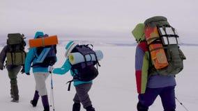 El grupo de turistas está emigrando en las montañas en día de invierno, mochilas que llevan y está empujando apagado por los pali metrajes