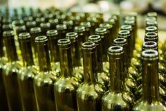 El grupo grande de verde recicló las botellas de vino de cristal en el lagar Imágenes de archivo libres de regalías