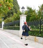 El guardia del palacio presidencial Fotos de archivo libres de regalías