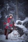 El guerrero se coloca sobre un tigre blanco el gruñir fotografía de archivo libre de regalías