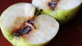 El gusano se arrastra de Apple corrompido almacen de metraje de vídeo
