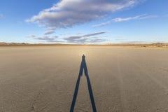 El-hägring skugga för öken för Mojave för torr sjö arkivbild