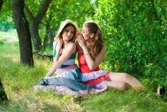El hablar sonriente feliz hermoso de dos mujeres jovenes Imagen de archivo