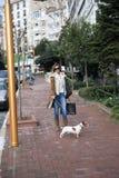El hacer compras con mi perro Imagenes de archivo