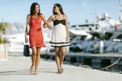 El hacer compras de los mejores amigos Imagen de archivo